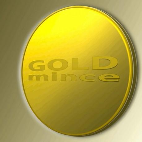 Zlatá mince 1000 Kč KAREL IV. Založení Karlštejna 1998 Proof